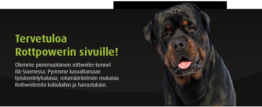Tervetuloa Rottpower.netiin!